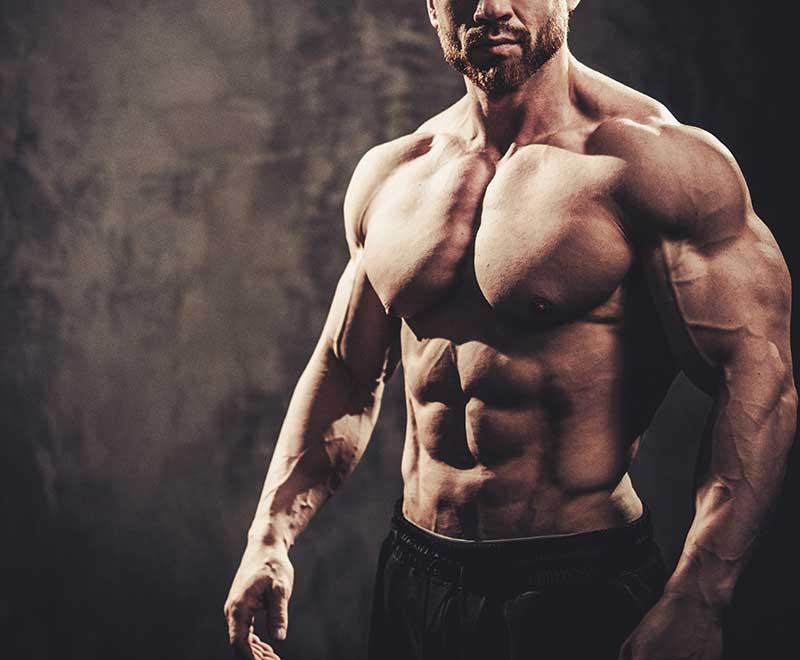 Fett-beim-Muskelaufbau